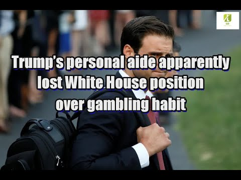 Trump's personal aide apparently lost White House position over gambling habit
