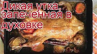 Рецепты из утки - как приготовить утки пошаговый рецепт - Дикая утка, запеченная в духовке