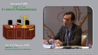 """Colloque """"Soft Law et droits fondamentaux"""" - Intervention Mr Olivier de FROUVILLE"""