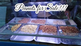 Download lagu SELLING PEANUTS IN THE NEIGHBORHOOD || The Ballentine Family
