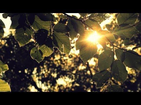 Mt eden - Still Alive (Electus remix)