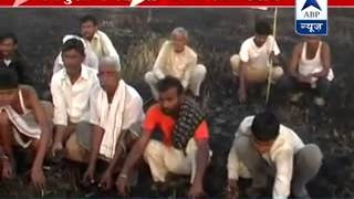Crops worth lakhs damaged in Mainpuri