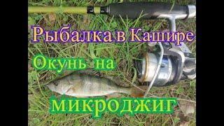 Рыбалка в Кашире окунь на микроджиг