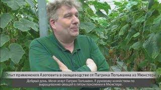 Azotovit im Bio Gemuseanbau rus