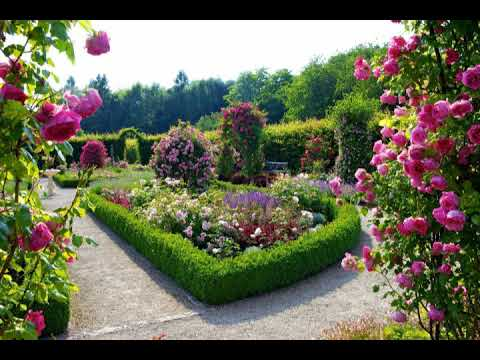 Flower Garden Hd Background Wallpaper Youtube