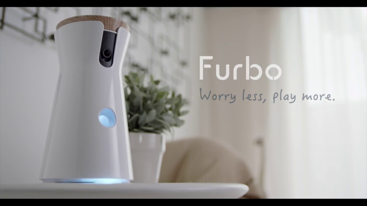 Meet Furbo The Camera That Helps Train A Dog Youtube