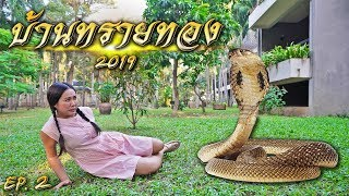งูนาคียักษ์ เข้าบ้านทรายทอง | พจมาน สว่างวงศ์ 2019 EP.2 | พี่เฟิร์น 108Life ละครสั้น