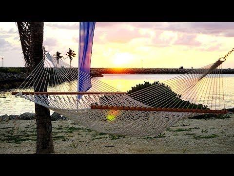 Best BEACHFRONT Suite Ever  EXOTIC Tropical Fishing Destination