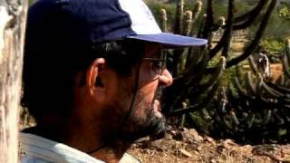 Brazil: Desertification