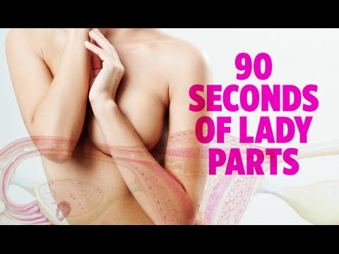 Where Is The Female G Spot Located?из YouTube · Длительность: 51 с