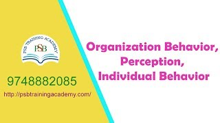 Organization Behavior , Perception, Individual Behavior