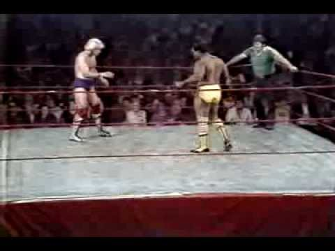 Terry Fargo v King Parsons