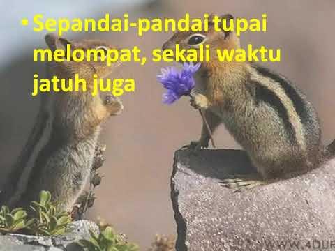 Peribahasa indonesia - Peribahasa Indonesia