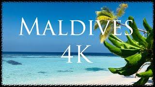 Maldives Angaga  Sland Resort \u0026 Spa 4K