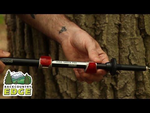 Black Diamond Trail Pro Shock Trekking Poles