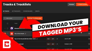 How To Download Your Tagged MP3's On BeatStars