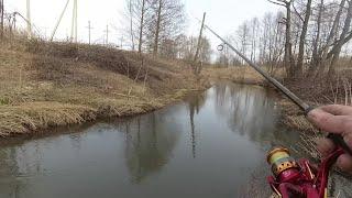 Исток реки Птичь Первое знакомство Прогулка со спиннингом Рыбалка в Беларуси