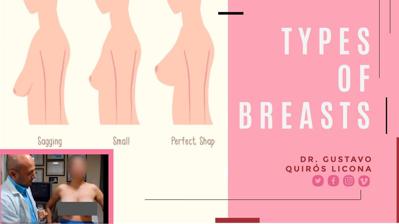 Tipos de senos primera parte