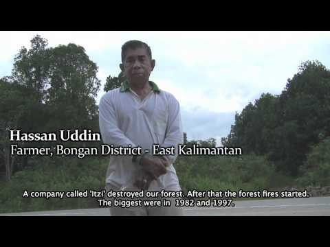 """Cari Hutan - In Search of Forest"" - Part 2 - Deforestation in Indonesia"