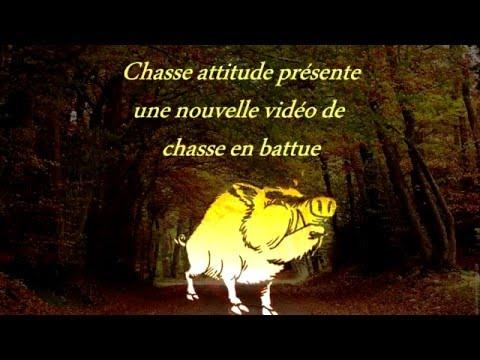 Chasse En Battue / Sanglier,chevreuil,cerf