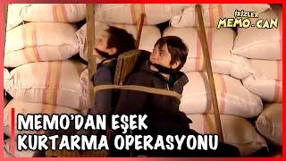 Memodan Eşek Kurtarma Operasyonu - İkizler Memo-Can 20.Bölüm