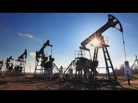 Art Berman    End of shale oil revolution in near future