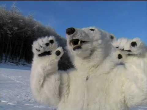 Animals&Mascots Polarbear realistic costume - YouTube - photo#22