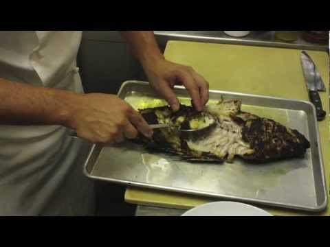 El pescado a la talla en playa las funnycat tv for Como cocinar pescado