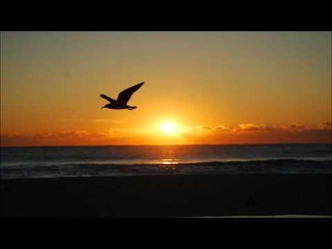 Flame & Scott Allen - Drifting Away