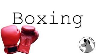 Boxing - Hangover Reviews