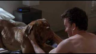 Turner & Hooch Bath Time