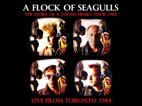 A Flock Of Seagulls | Live Oct.18th 1984 'The Story Of A Young Heart' Tour
