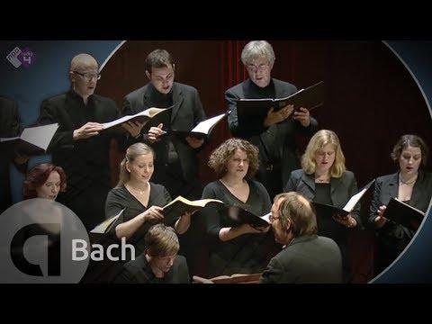 J.S. Bach: Motet BWV 227 'Jesu, meine Freude' - Vocalconsort Berlin [HD]