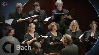 J.S. Bach: Motet BWV 227