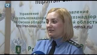 Омск: Час новостей от 1 февраля 2019 года (11:00). Новости