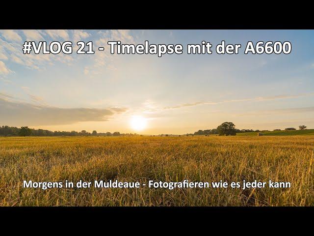 4k // VLOG #021 - Timelapse - Zeitraffer - A6100 / A6400 / A6600 - Am Morgen in der Natur