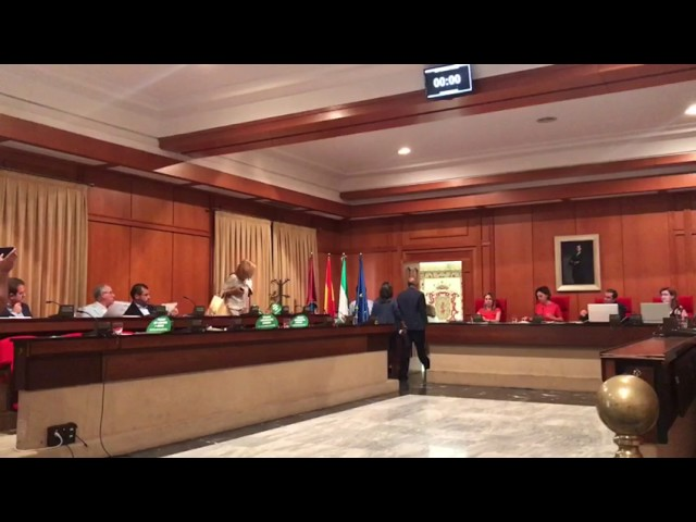 Salida de los concejales del PP del Pleno de Córdoba