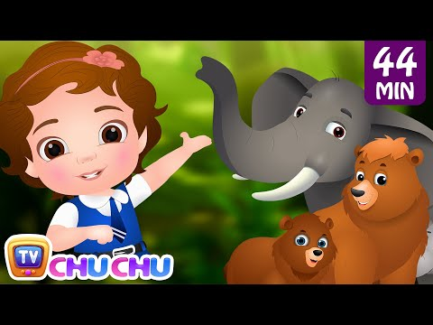 Going To the Forest  Wild Animals for Kids  Original Learning Songs & Nursery Rhymes  ChuChu TV