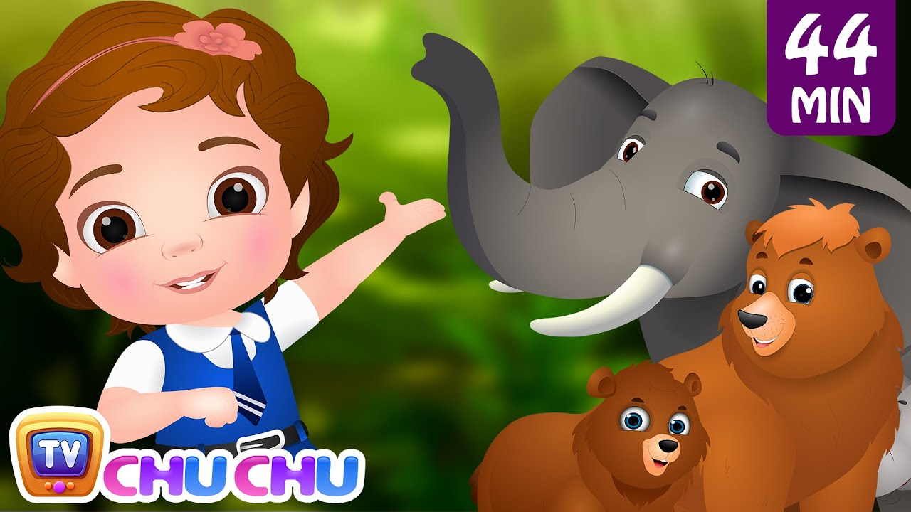 Going To the Forest | Wild Animals for Kids and More Learning Songs & Nursery Rhymes by ChuChu T