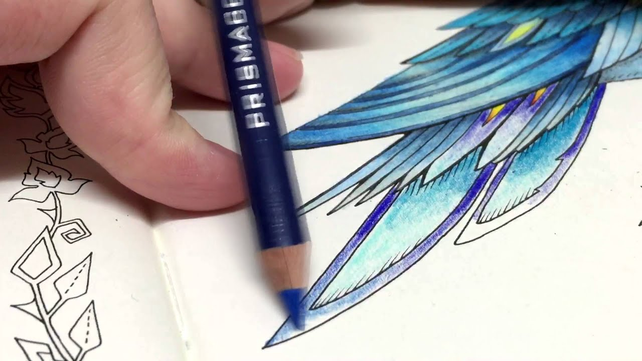 Enchanted forest coloring book youtube - Asmr Adult Coloring Enchanted Forest Blue Bird 12 Blended Pencil Prismacolor Premier Youtube