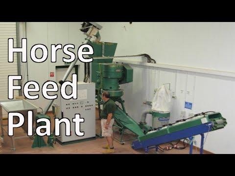 Horse/Animal/Bird Feed Pellet Plant : PelHeat.com