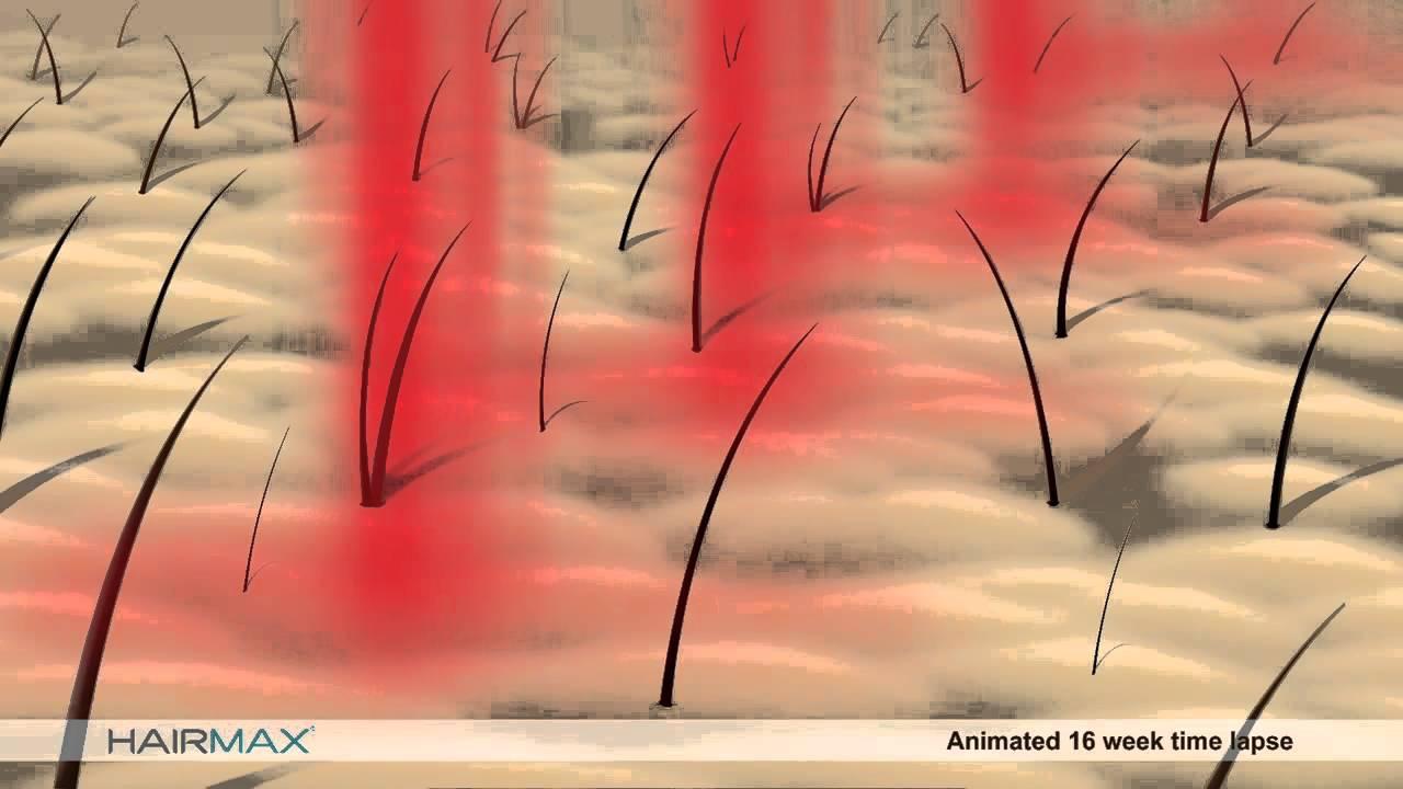 Hair Growth Animation - YouTube