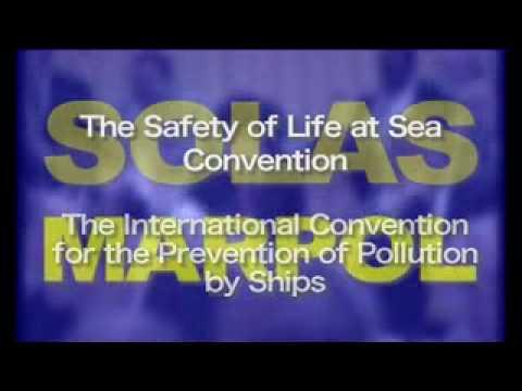 Study International Shipping    Ocean Cargo container shipments.flv