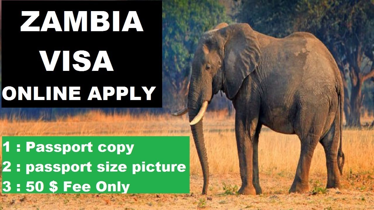 Zambia Visa Online Apply 2019 - Get Zambia E visa Within Few Hours