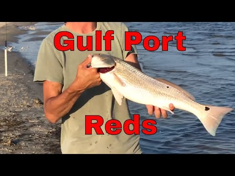 Surf Fishing For Redfish In Gulfport/Biloxi, Mississippi