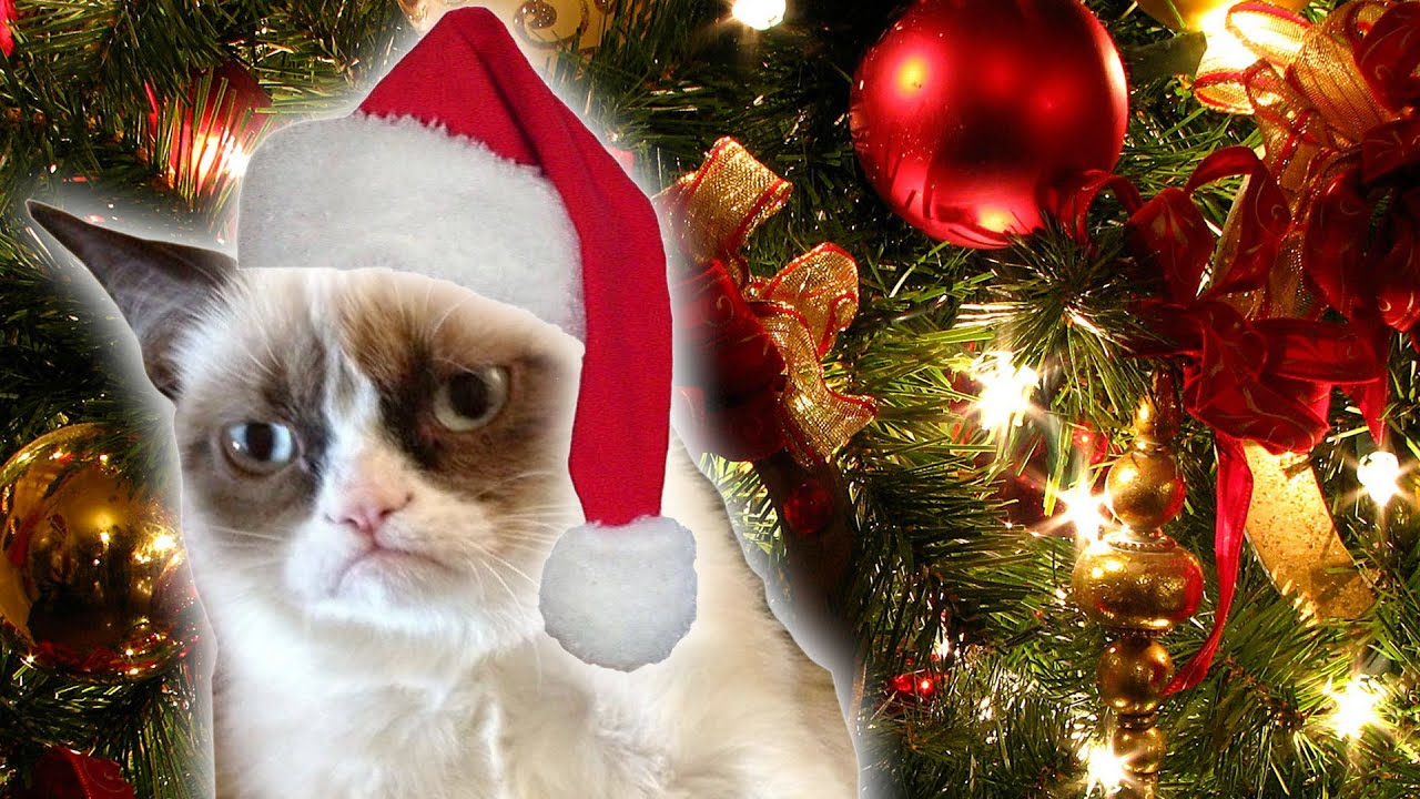 Grumpy cat s worst christmas ever trailer daily rehash for Bad christmas decoration