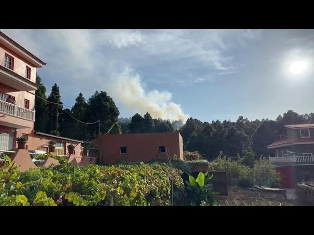 Se produce un conato de Incendio en el municipio de Icod de los Vinos.