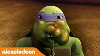 Teenage Mutant Ninja Turtles | Insektenangriff | Nickelodeon Deutschland