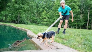 MONSTER IN POND VS DOG!!