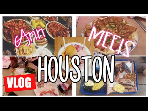 🚗 Houston Travel Diary: Shaved Ice 🍧, Best Hotdogs, Crazy Gas Station⛽️! | MakeupANNimal ANNventures